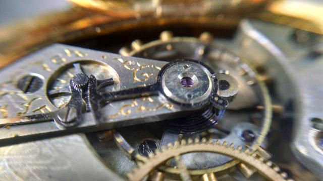 Macro Pocket Watch